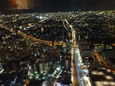 猛吹雪の北海道から大阪へ。大阪城→アメリカ村→道頓堀→通天閣→あべのハルカス