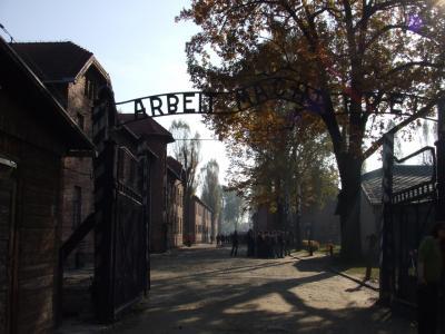 アウシュヴィッツ強制収容所の画像 p1_21