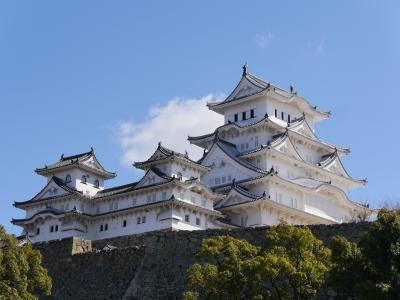 姫路城と兵庫県立美術館、淡路夢舞台奇跡の星の植物館