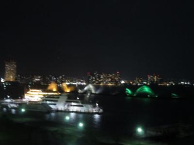 琵琶湖ホテルに宿泊 翌朝ちょこっと琵琶湖を散策