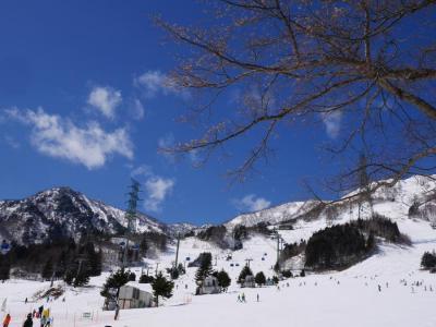 2016年:春休み??友達17人と苗場にスキー旅行!1(2泊3日)
