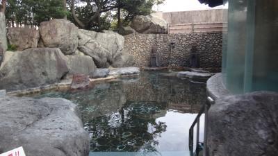 淡墨桜・白川郷・高山観光バスツアー(11) 下呂温泉水明館に到着し夕食前までの時間。
