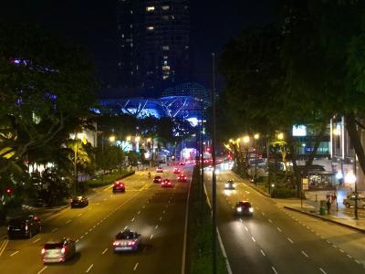 弾丸個人旅行 1泊3日 シンガポールの旅 ~旅行記も弾丸ですw~