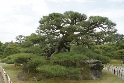 20160423-2 高松 四半世紀ぶりの栗林公園散歩