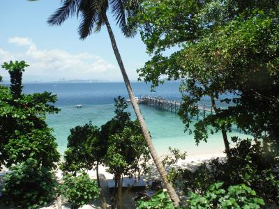 海も森も楽しめた コタキナバル(スパンガール島・キナバル公園・キャノピーウォーク等)