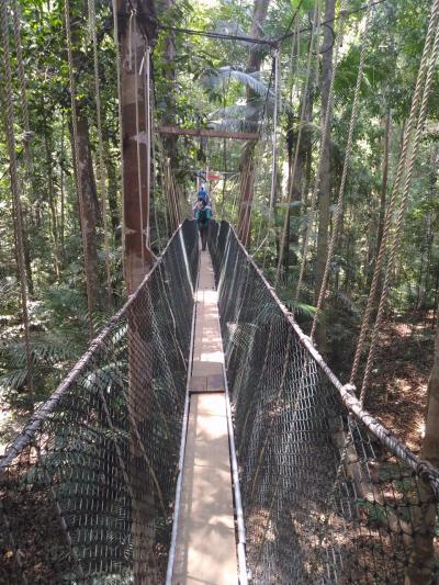 前から行ってみたかったタマンヌガラ国立公園、ついに。