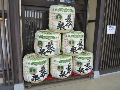 成田山新勝寺へ(1)
