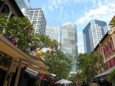 2泊4日で満喫シンガポール、女ひとり旅【2】ガーデンズ・バイ・ザ・ベイでOCBCスカイウェイ、マリーナベイサンズ、チャイナタウンとアラブストリート散歩して、ワンダーフルを観にマーライオンパークへ。ラッフルズ・ホテル。そして帰国。