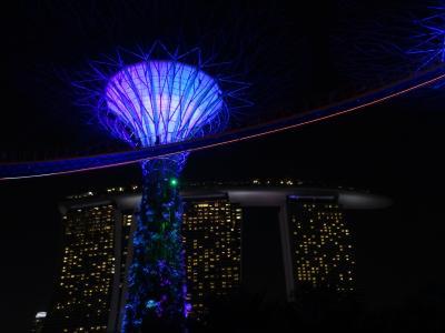 初めてのシンガポール 4日目