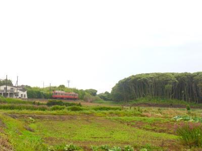 あじさい咲く★銚子電鉄で鉄子の旅 その1(銚子→本銚子→海鹿島→君ヶ浜→外川)