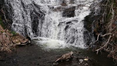 中禅寺湖と龍頭の滝
