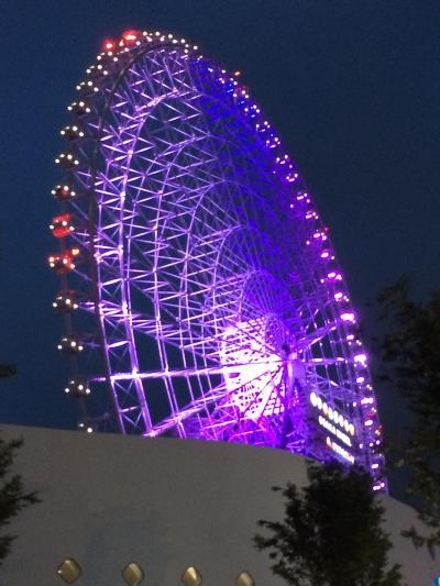 関西/大阪 神戸 高いもの見たさ おっさん退職記念
