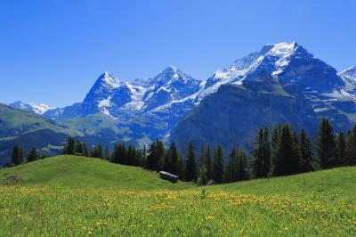 絶景の連続です! 「スイス周遊の旅」/4日目【グリンデルワルド~アルメントフーベル~ブルーメンタール(花の谷)ハイキング~ミューレン~ツエルマット】