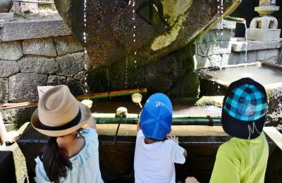 三世代で巡る海遊館USJ奈良の旅三日目 4人の孫憶えているのは鹿のこと 昼食そうめん二人分完食