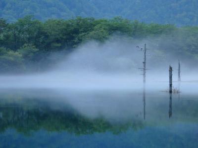 夏の上高地・乗鞍ハイキング vol.1 ~朝もや漂う幻想的な大正池から河童橋まで~