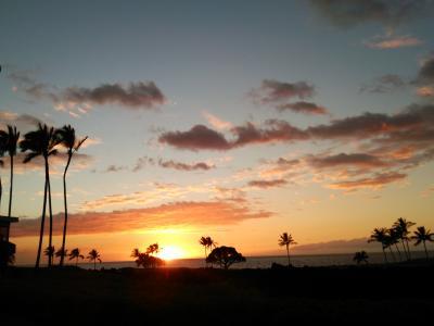 ハワイ島で夏休み 1日目