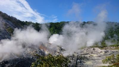 松島、玉川温泉に行きたくて
