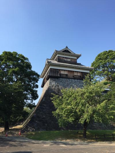 夏旅は2泊3日で九州へ。2日目・・桜島~熊本(加藤神社・熊本城)~博多