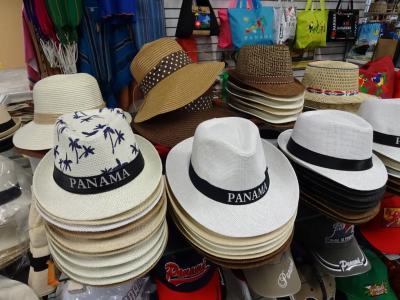 【2016夏】 中南米9日間の旅(6/8) トランジットを利用してパナマ運河へ