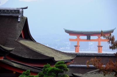 長門から安芸へ、想い出を辿る旅【4】~安芸の宮島・厳島神社を参拝~