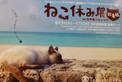 (=^・^=)ブーム到来Part1 ねこ休み展総集編(日本橋タカシマヤ開催)