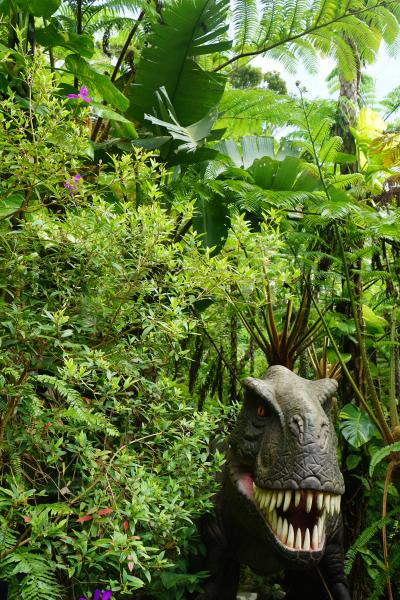 台風16号と17号の狭間を旅した沖縄4日間(1)やんばる亜熱帯の森から海洋博公園おきなわ郷土村。