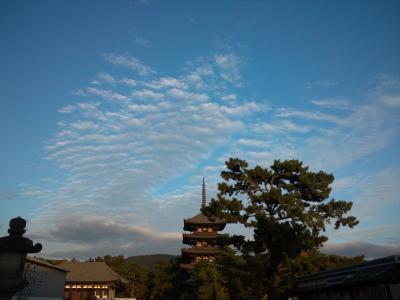 USJと奈良散策