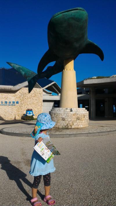 子連れ(3歳)でGO!~美ら海水族館からの石垣島