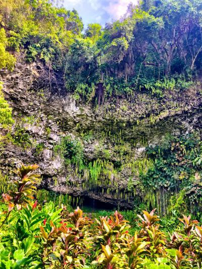 Hawaii カウアイ島 ③
