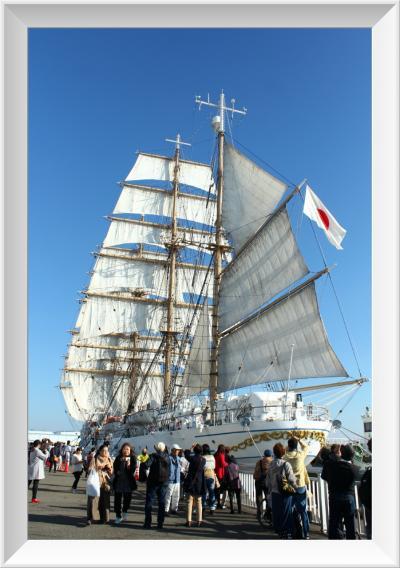 純白の帆が輝く 青空の名古屋港ガーデン埠頭 海王丸セイルドリル♪
