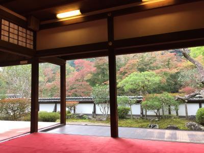 秋を感じて・・歩く奈良(正暦寺・興福寺・ならまちへ)