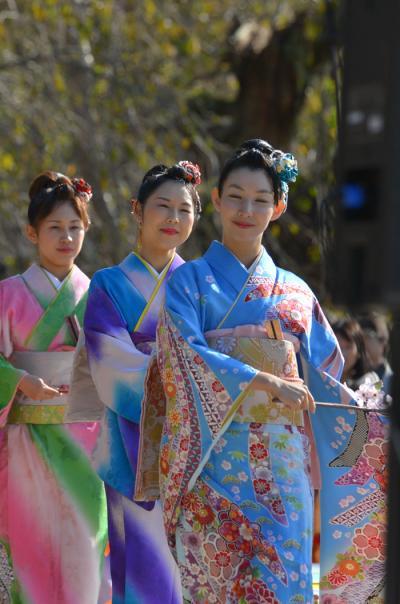 2016 西陣きもの・帯フェスティバル(京小町踊り子隊)(3)