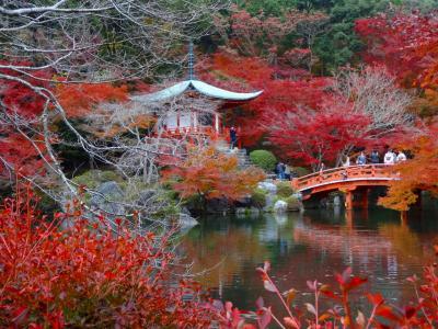 錦繍の東寺から太閤の夢の果て、醍醐寺へーーー