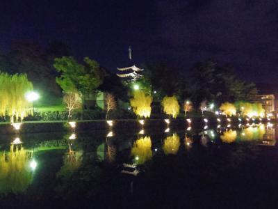 2泊1日だけでも奈良へ 夜の興福寺とJR駅前ホテル2か所