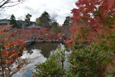 京都の紅葉② 東山~永観堂と貴船神社