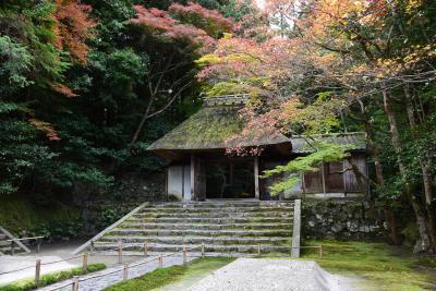 2016 京の紅葉散歩 法然院