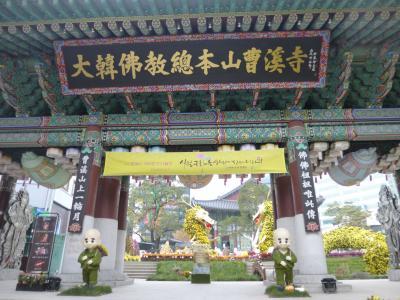 2016秋 韓国3泊4日-4曹渓寺は菊花で秋本番