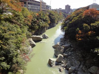 鬼怒川温泉をン十年ぶりに激安旅行(温泉街散策&衝撃!ホテルでアレに遭遇編)