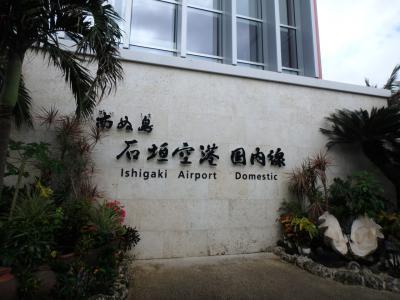 12月になぜ沖縄?それは安いから。