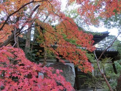 秋の九州・山口の旅(4)下関・長府