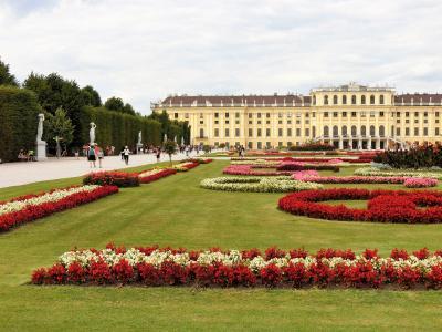美しのドナウと中欧4カ国の旅 8日間 16 ( 旅行6日目 ウィーン観光のフィナーレはシェーンブルン宮殿で) )