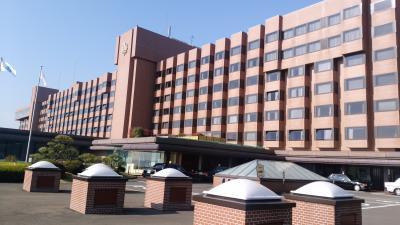 快適なエンブラレル190で行く鹿児島旅行 城山観光ホテルと仙厳園
