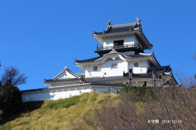 東海の100名城を訪ねて/長篠城、掛川城、駿府城、山中城、小田原城