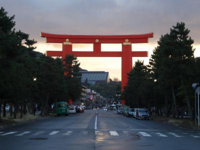 2016年12月 京野菜フェスティバルと手打ちうどん山元麺蔵 京都市動物園の無料入園日