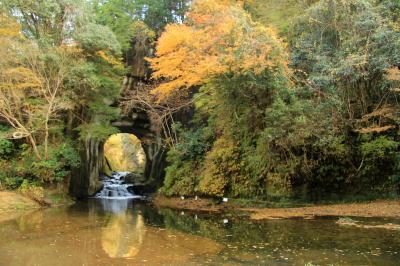 濃溝の滝&養老渓谷の紅葉2016年12月