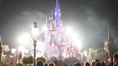 WDW&DCL【Part3】~WDW後半から帰国編~