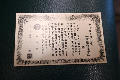 Lrg_11204548
