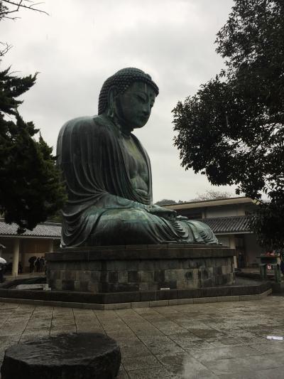 思い立って・・・雨の鎌倉