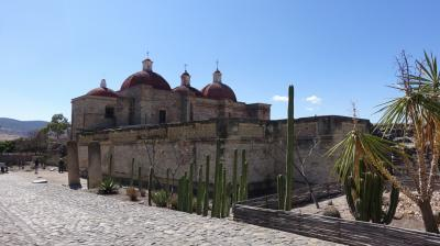 2017新春のメキシコ その2~精巧なモザイクのミトラ遺跡と巨大なトゥーレの木