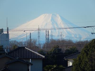 1月11日ふじみ野市より素晴らしい富士山が見られた